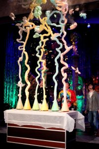 Steve-Spangler-on-the-Ellen-Degeneres-Show-with-Elephants-Toothpaste-2010102900