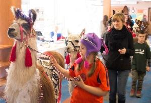 Llama and Alpaca Parade